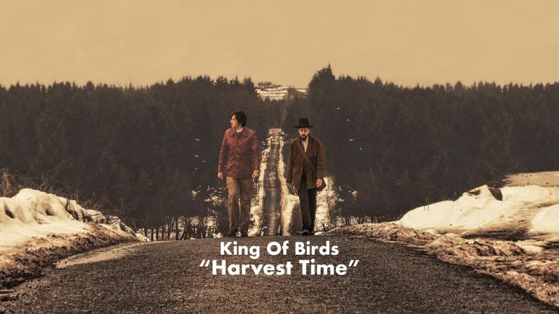 King Of Birds - Harvest Time