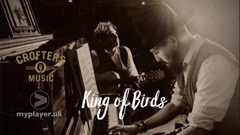 King of Birds Set 2
